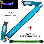 Blue LED Reflective Belt extension web2