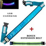 Blue LED Reflective Belt extension web2